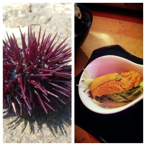Sea Urchin! This was WILD! I was a bit terrified but it tasted surprisingly sweet. Did not love the texture but glad I tried it!