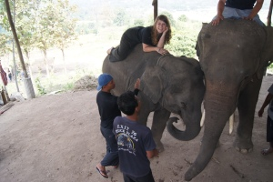 "Learning how to ""talk"" to the elephants. This is Mona Lisa."